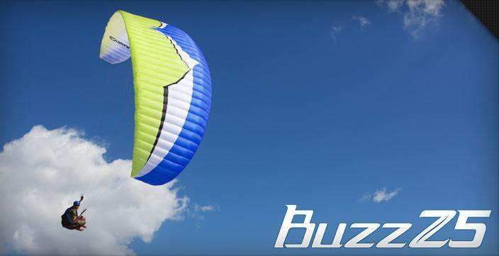 OzoneBuzzZ5_Logo