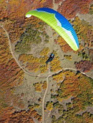 Swift4 Ozone 300x395 - Ozone Swift4 L